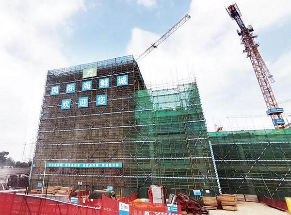 """深圳明年将多一个43万平米的""""海鲜篮子"""" 还有海洋文化体验馆"""